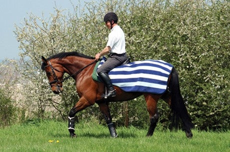 Horseware Newmarket Competition Sheet - Witney Navy
