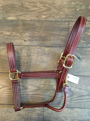 Walsh British Halter Chestnut
