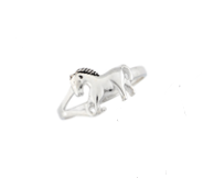 AWST Mini Horse Ring