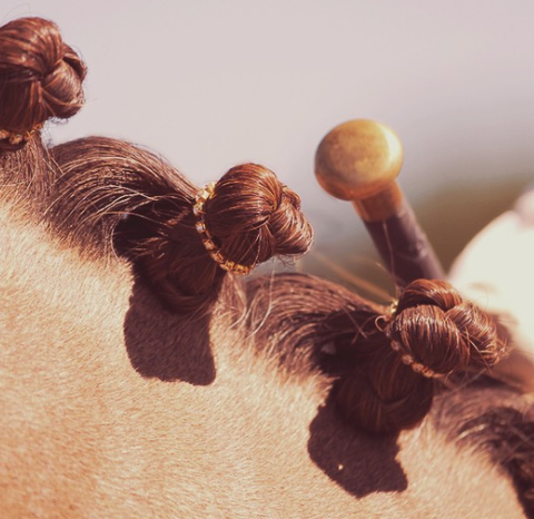 Spiced Equestrian Braid Bling