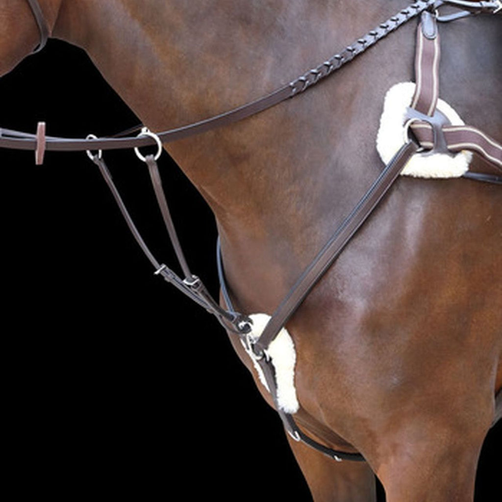 Shires Rossano 5-Point Breastplate - Havana