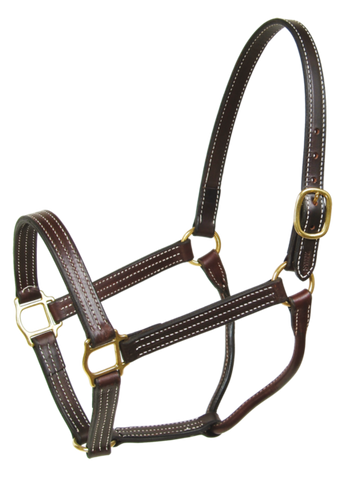 Walsh British Halter Havanna