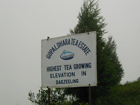 Darjeeling Gopaldhara Estate sign