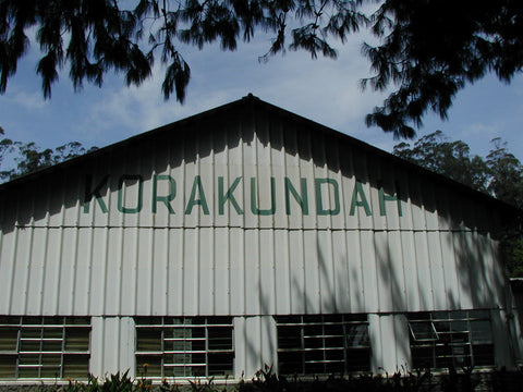 Green Korakundah Estate Nilgiri-Organic & Bio-Dynamic sorting facility