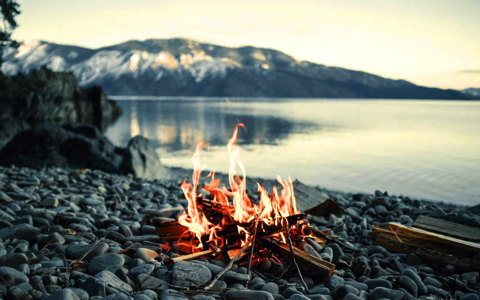 fire starting kits for camping grilling and outdoor use