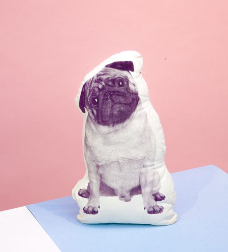 pup-areaware-pillow-for-web