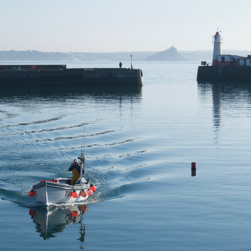 Fisherman returns to harbour, Newlyn