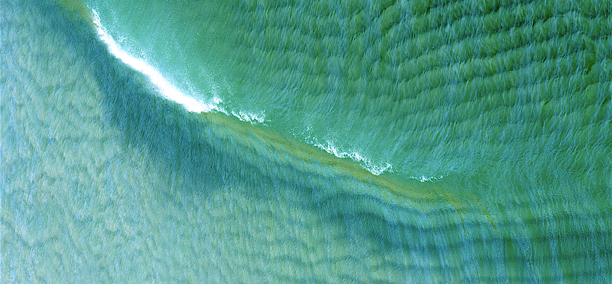 Sea Green - Reducing our Carbon Footprint