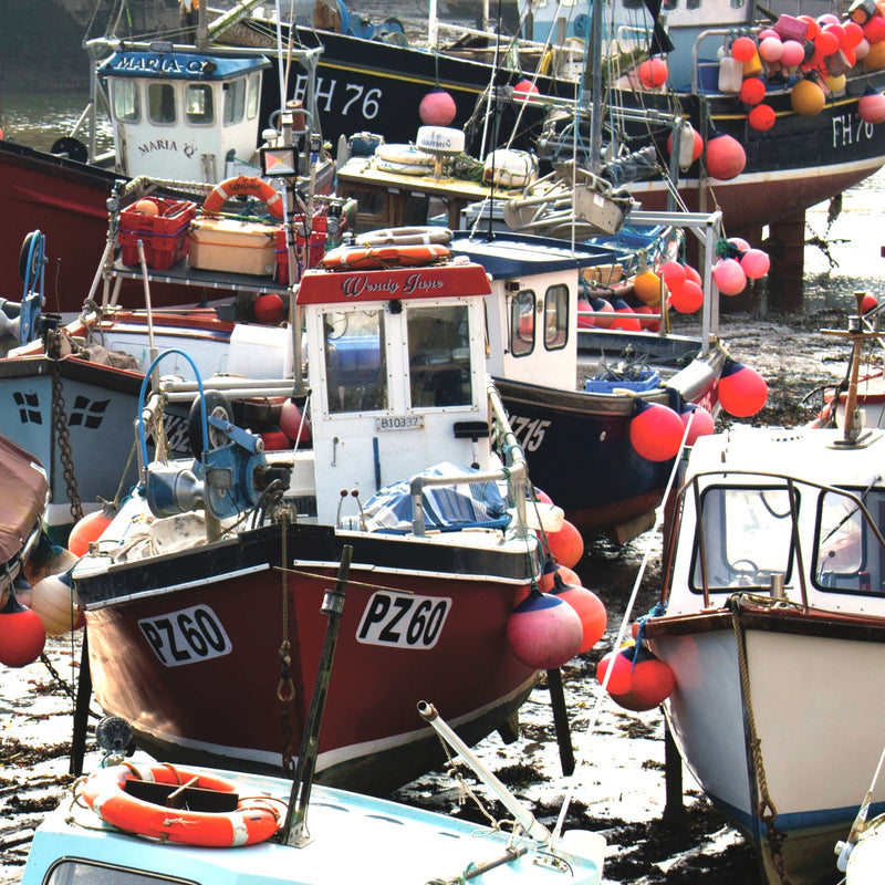 Low Tide, Mevagissey Harbour
