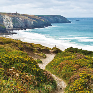 Coast Path to Porthtowan