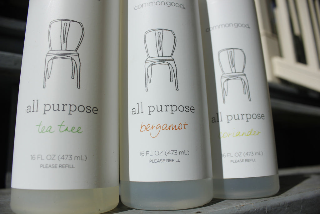 16 oz All Purpose Cleaner