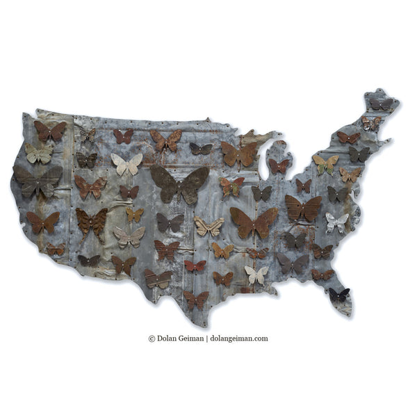 Industrial Modern American Butterflies Metal Wall Art