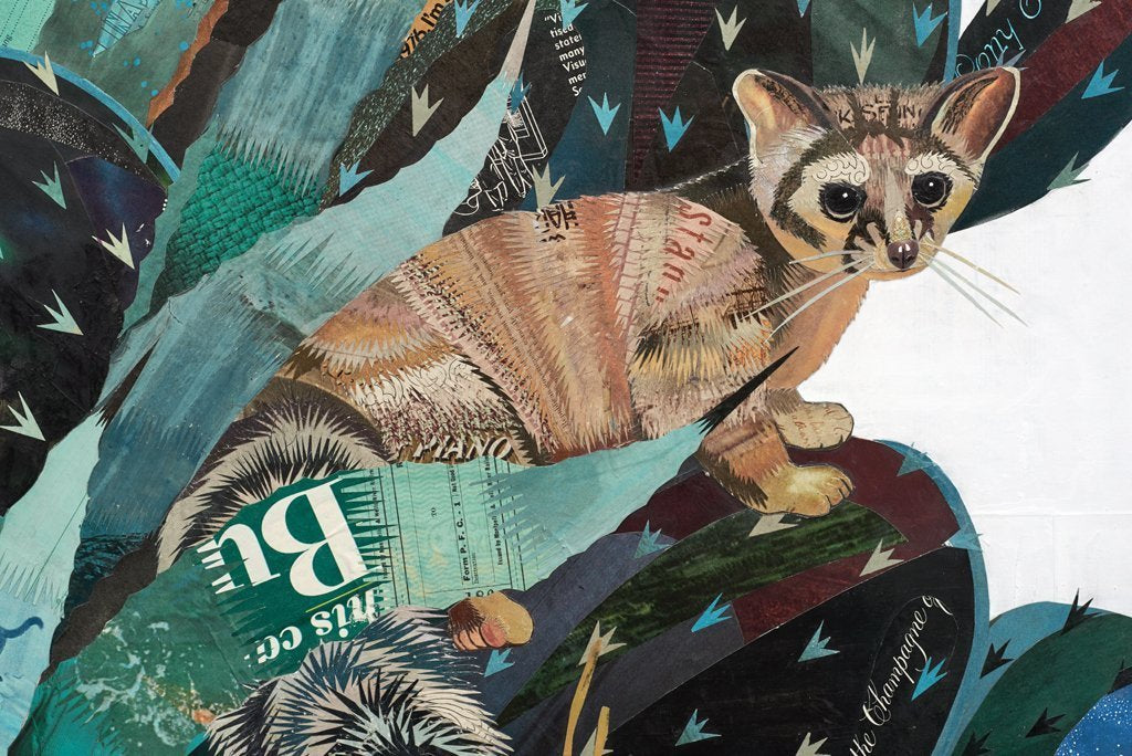 Baja Backcountry (Ring-Tailed Cat) Original Paper Collage