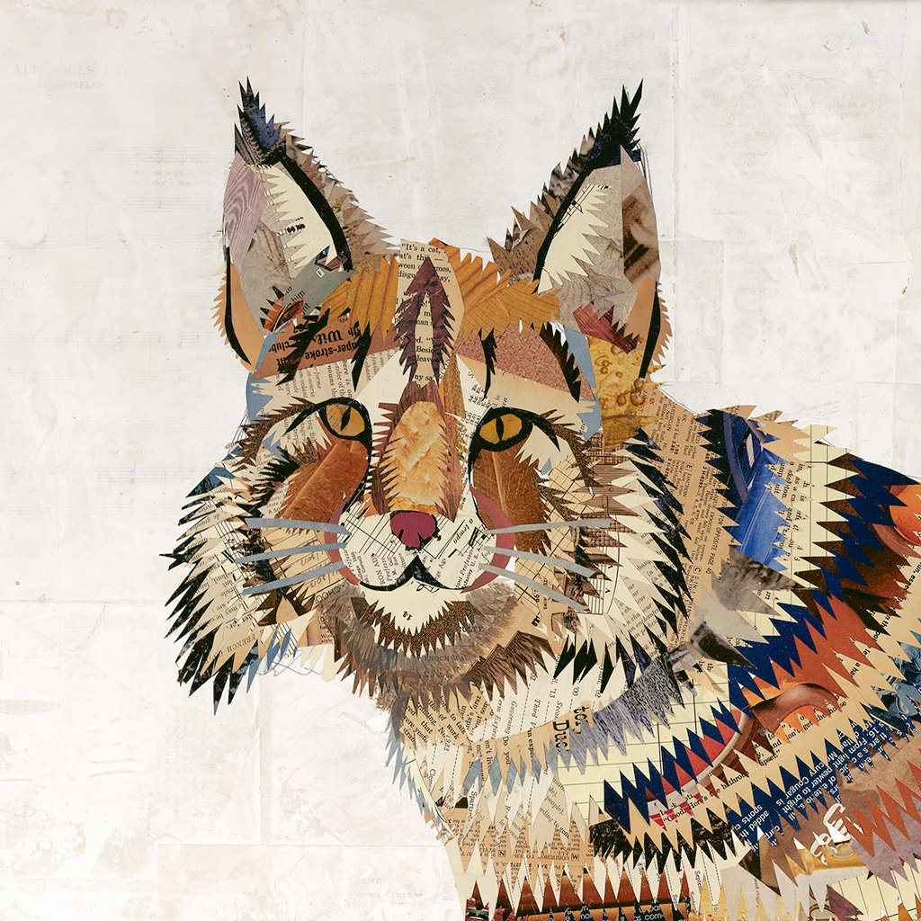 Bobcat with Chevron Pattern Art Print