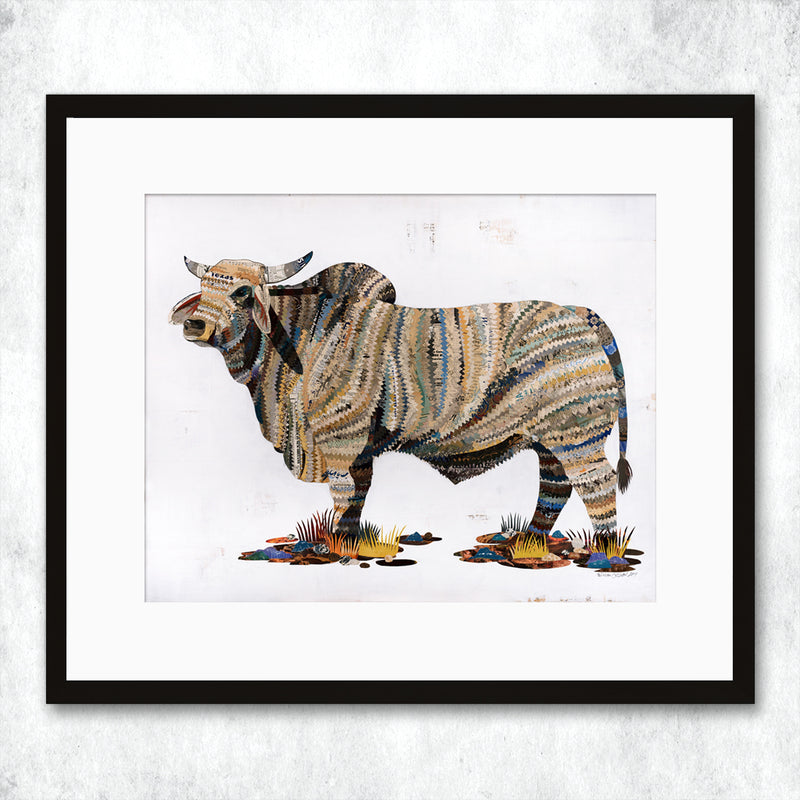 main image for WHSL - Brahman Bull Art Print