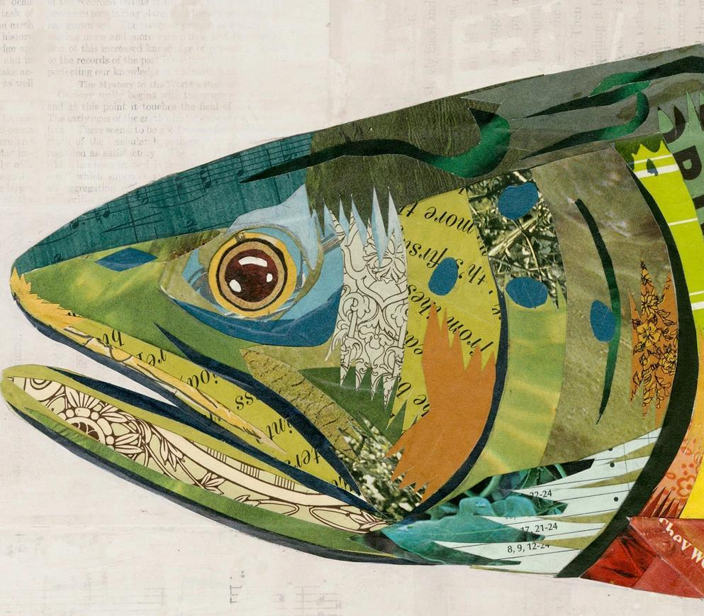 brook trout paper collage art