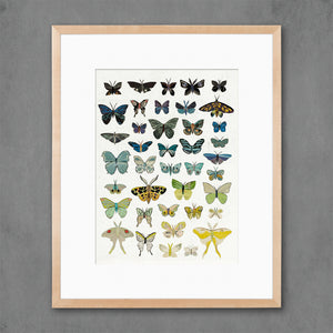 thumbnail for Dusk Butterflies Art Print