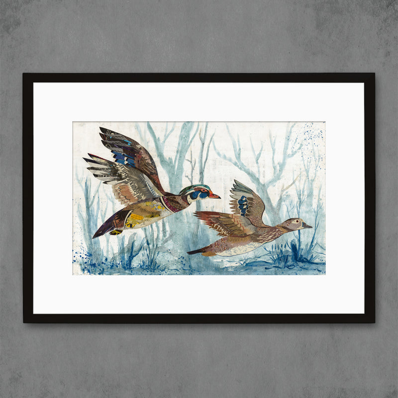 main image for Wood Ducks Art Print
