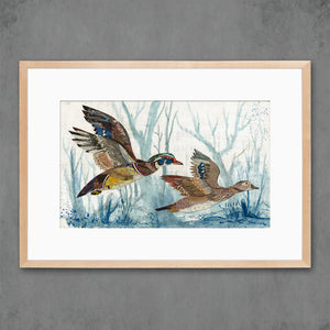 thumbnail for Wood Ducks Art Print