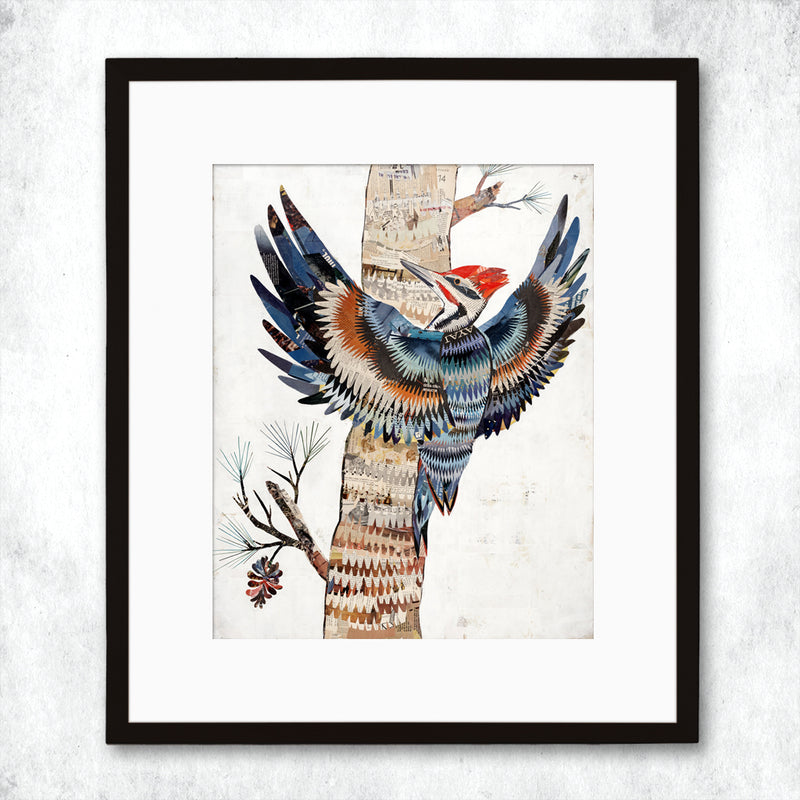 main image for WHSL - The Great Woodpecker Art Print