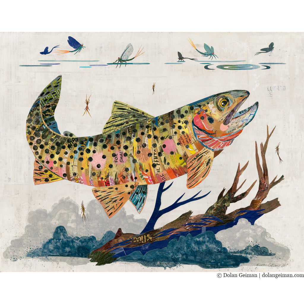 greenback cutthroat trout paper collage art