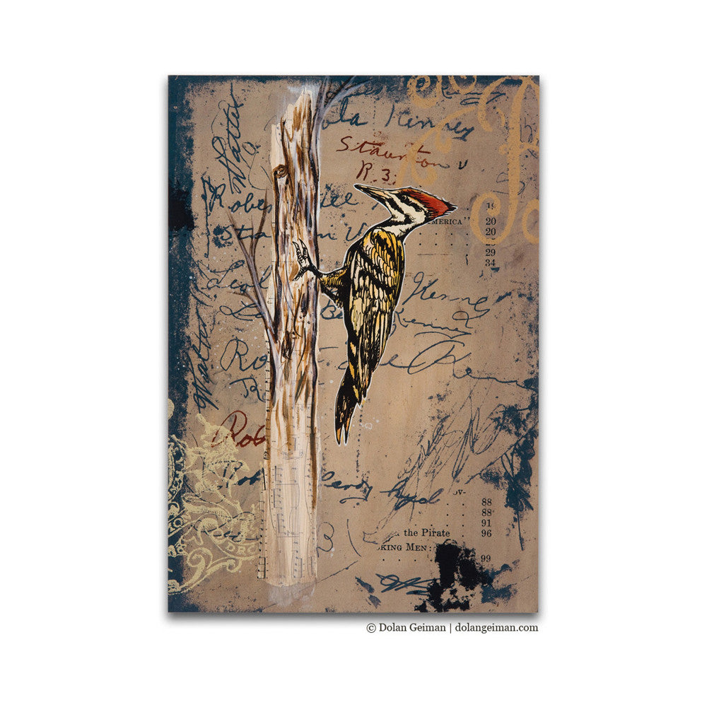 Natural History of Virginia, Fig 1 Mixed Media Bird Art