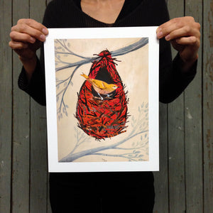thumbnail for Oriole in Nest Bird Art Print