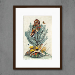 thumbnail for Owl with Sage Brush and Lizard Art Print