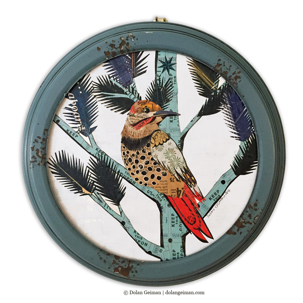 Original Northern Flicker Bird Art, Circular Paper Collage