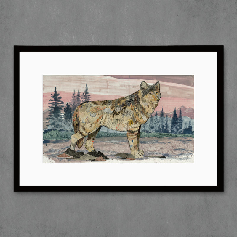 main image for Sunrise Visitor Wolf Art Print