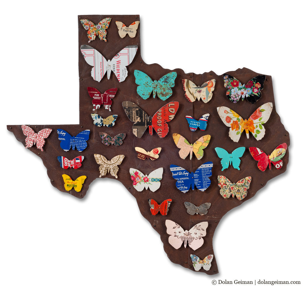 Texas Butterflies Colorful State Map Art
