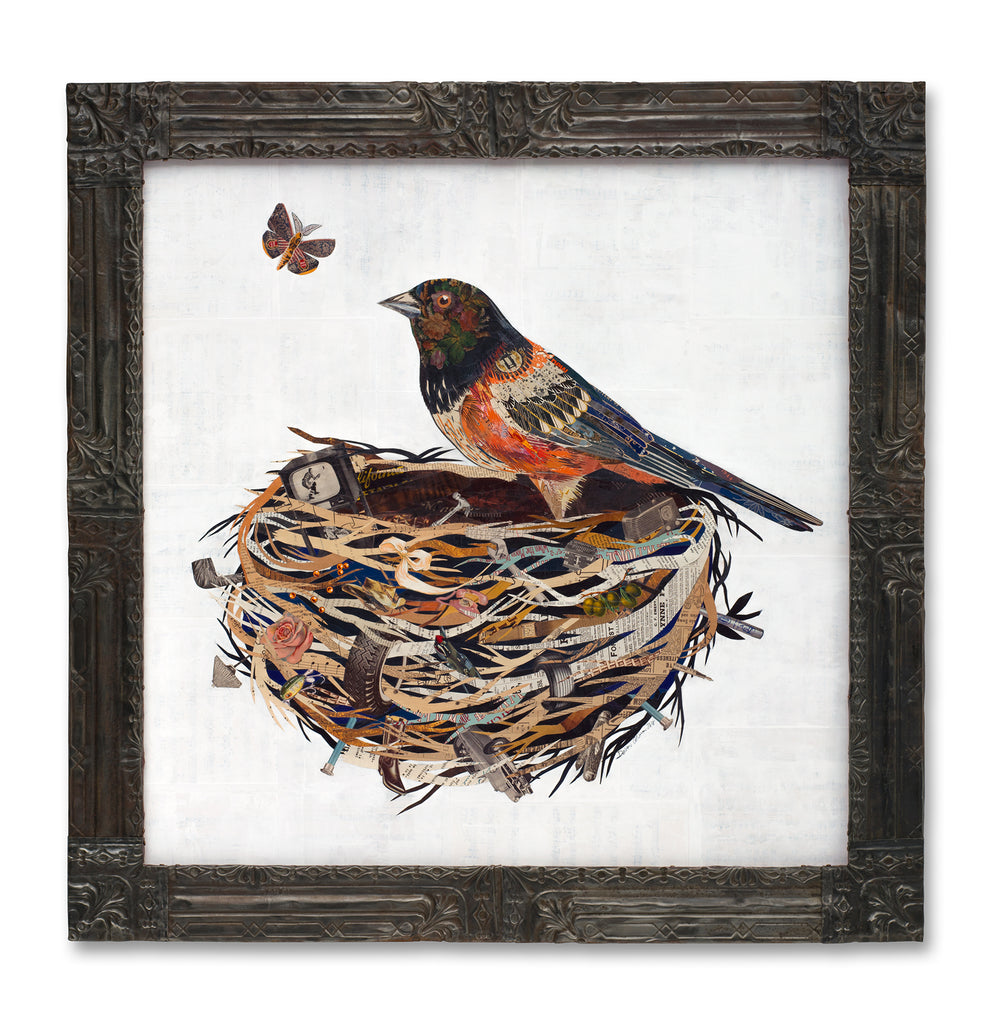 Towhee in Nest Original Paper Collage