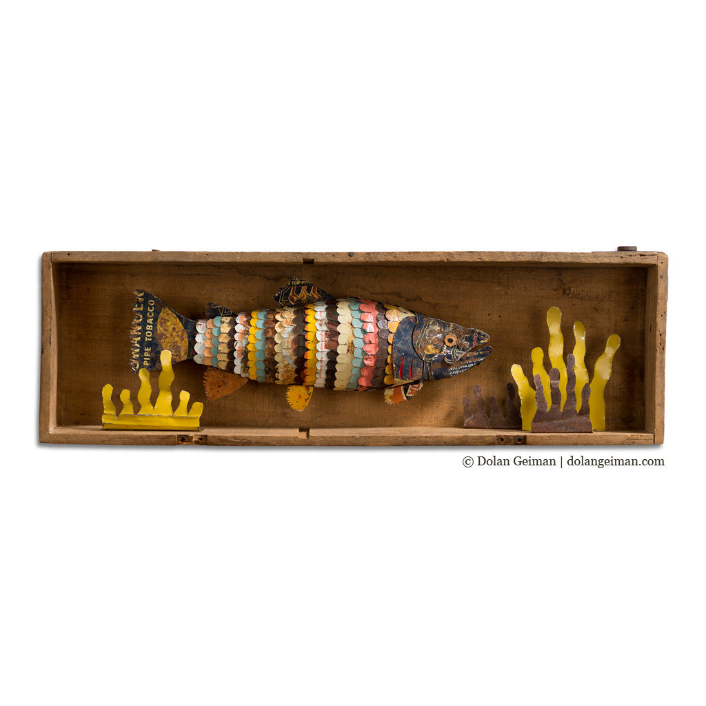 Trout in Wooden Box Faux Taxidermy Fish Diorama