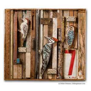 thumbnail for Woodpecker Faux Taxidermy Rescued Wood Construction