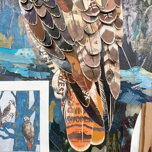 thumbnail for Custom Red-Tailed Hawk Original Paper Collage