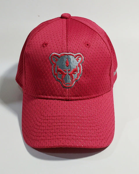 Big Bear Jersey Mesh Cap