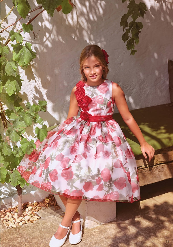 Petit Red Organza Dress Red