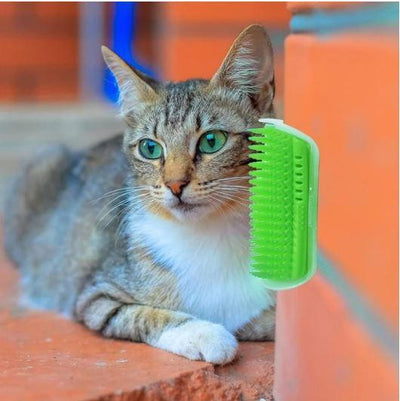 MyKitty Cat Massage Brush