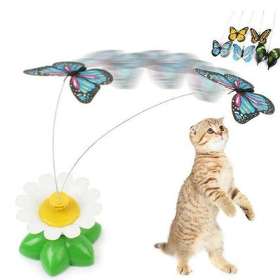 Interactive Bird Toy For Cats - Shop Marleys