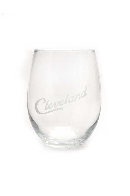 I Liked Cleveland Before It Was Cool Can Cooler