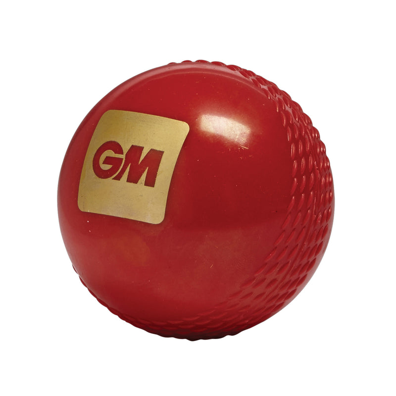 Gunn & Moore True Bounce Soft Cricket Ball