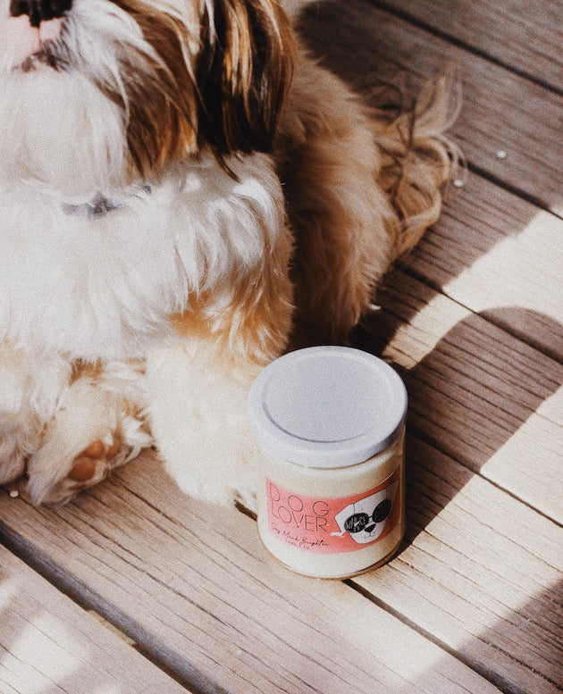 Load image into Gallery viewer, Dog Lover || Birch + Black Pepper || 8oz