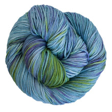 Load image into Gallery viewer, Malabrigo Verano