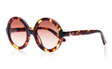 Lenny - Sons + Daughters Eyewear - 14