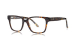 Spiff - Sons + Daughters Eyewear - 14
