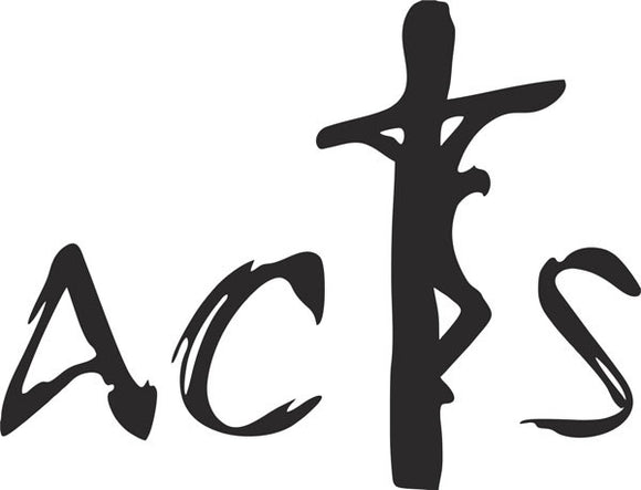 Acts Jesus on Cross religious vinyl decal christian