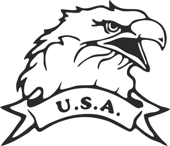 Eagle USA Vinyl Decal
