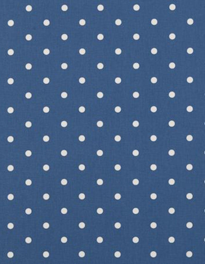 Oilcloth Dotty Denim