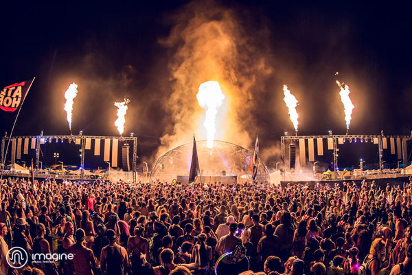 7d13b2aca063 10 Festival on the Rise in 2019