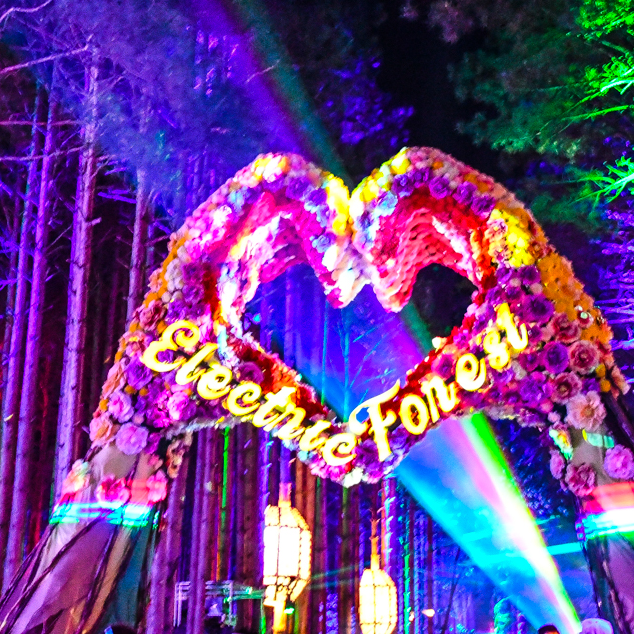 Top 10 Most Memorable Acts Of Electric Forest 2018